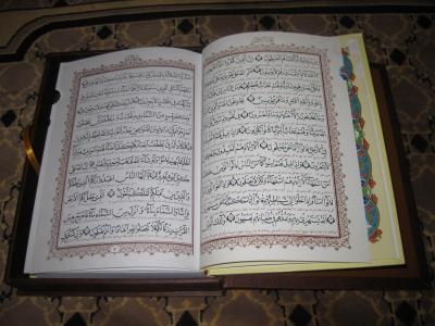 dts_image_4470_mhbhqetkft_2171_400_300 Islam-Expertin: Koran-Aktion könnte Ruf von Muslimen schaden