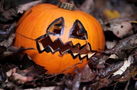 Photo of Halloween contra Faschingsdienstag