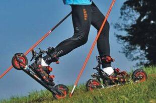 JG 060. wirtschaft.com Gesunder Sport e1359487474693 310x205 - Skiken: Auf vier Rädern gesund Sport betreiben