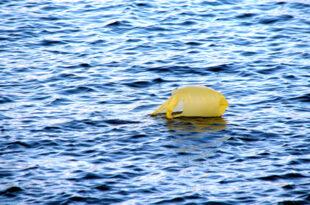 Plastikmuell 310x205 - Verbot für Plastiktüten
