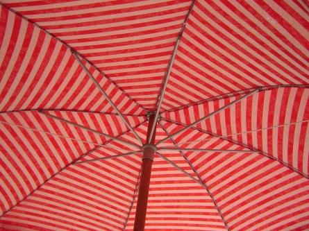 Bild von Unternehmensinsolvenz: Schutz unter dem Schirm