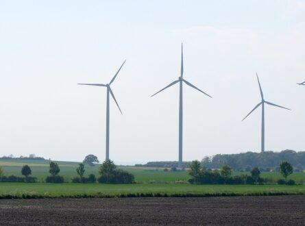 dts image 1551 dhfsnqmqra 2171 445 3341 445x330 - Bundesregierung setzt auf eigene europäische Ziele für Ökostromausbau