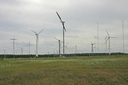 wind energy institute of canada north cape pei canada 445x296 - Deutscher Energiewende-Index erreicht Allzeittief