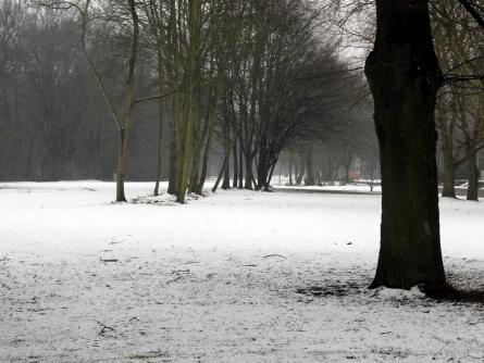 Bild von Deutscher Winter ungewöhnlich warm und trocken