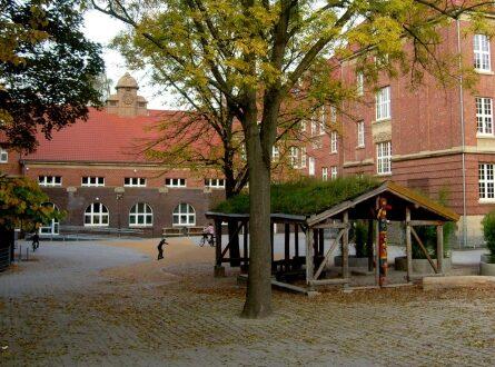 dts image 1997 sdnkmrtbro 2171 445 3341 445x330 - NRW-CDU-Chef fordert Debatte ohne Tabus zum Turbo-Abitur