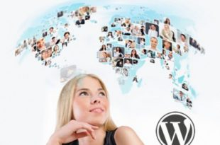 WordPress Plugins 399x3001 310x205 - Erfolgreich bloggen Teil 3: WordPress installieren