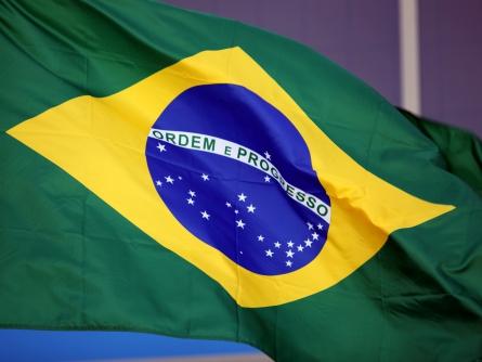 dts image 6955 fgcdcttjbk 2171 445 334 - Brasilien: Rousseff tritt für zweite Amtszeit an
