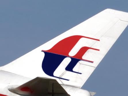 dts image 7892 gbmjbmoskq 2171 445 334 - MH17: Niederländische Experten beginnen mit Identifizierung der Opfer