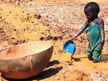Bild von Gefährlicher Goldrausch in Mali