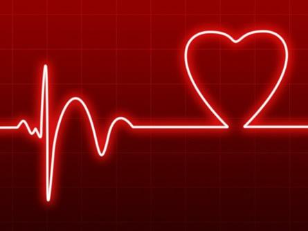 WordPress Heartbeat
