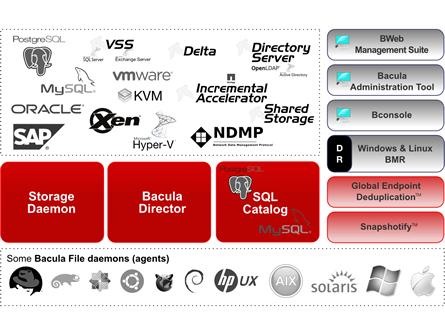 Bacula Systems bietet Backups für grosse Datenmengen