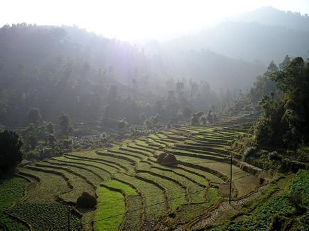 Photo of DRK startet am Montag Hilfsflug nach Nepal