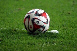 dts image 8483 sqejtjkgbo 2171 701 5261 310x205 - Grüne wollen DFB-Präsidenten in Sportausschuss des Bundestags laden