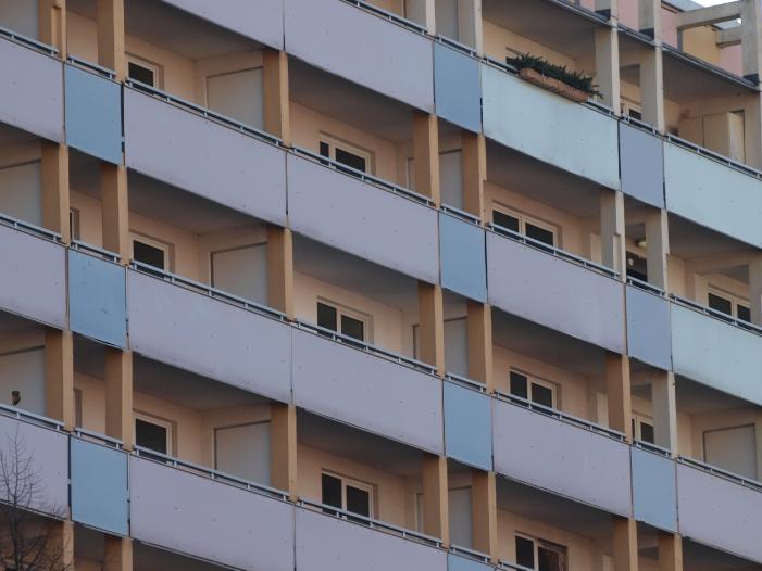 Bild von Linke wollen mehr Geld für Wohnungsbau