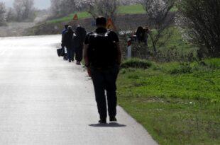 Studie 50 Prozent für Aufnahme von Wirtschaftsflüchtlingen 310x205 - Studie: 50 Prozent für Aufnahme von Wirtschaftsflüchtlingen