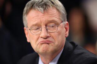 AfD Chef Meuthen lobt Grünen Politiker Palmer 310x205 - AfD-Chef Meuthen lobt Grünen-Politiker Palmer