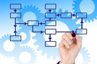 Betriebswirtschaft 310x205 - Betriebswirtschaftliche Jobs im Hintergrund – ein Überblick