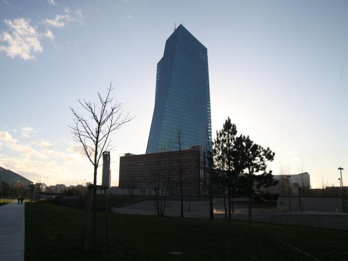Dekabank-Chef: Nutzen der EZB-Politik nimmt deutlich ab