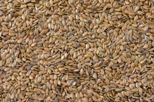 Leinsamen 310x205 - Omega 3 Fettsäuren: Essenziell und wichtig für die Gesundheit