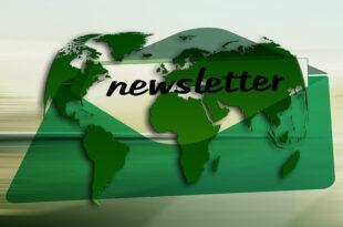 Newsletter 310x205 - Grundlagen für erfolgreiches E-Mail-Marketing