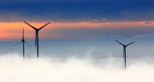 Windpark 310x165 - Niederösterreich ist führend bei Windenergie