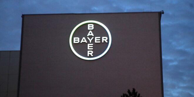 Bayer Chef Gebotener Kaufpreis sicherer Wert für Monsanto Aktionäre 660x330 - Bayer-Chef: Gebotener Kaufpreis sicherer Wert für Monsanto-Aktionäre