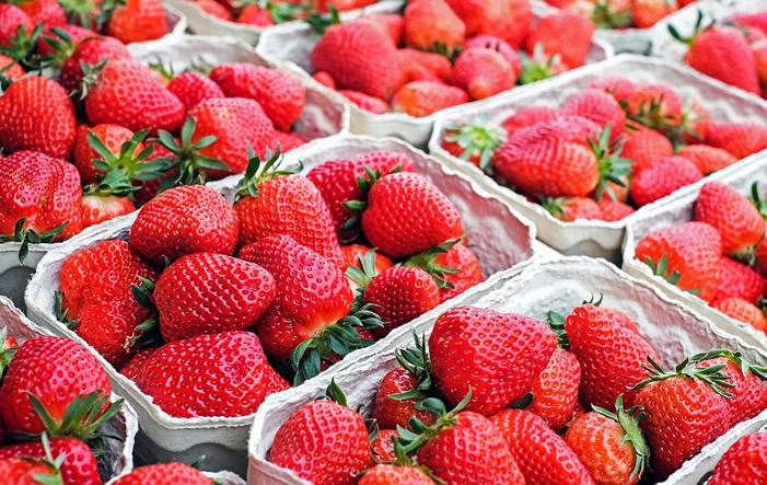 Erdbeeren - Damit Nahrung nicht zum Müll wird