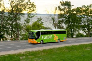 Flixbus 310x205 - Millionenverluste: Erste Unternehmen steigen aus Fernbusgeschäft aus