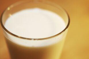 Milchpreis sinkt auf neues Rekordtief 310x205 - Milchpreis sinkt auf neues Rekordtief