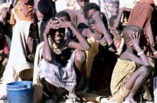 Linkspartei Flüchtlingshilfe in Afrika dramatisch unterfinanziert 310x205 - Linkspartei: Flüchtlingshilfe in Afrika dramatisch unterfinanziert