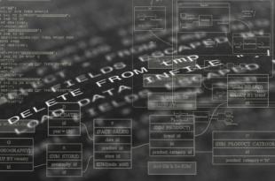 Programmiersprachen 310x205 - Die 6 wichtigsten Programmiersprachen
