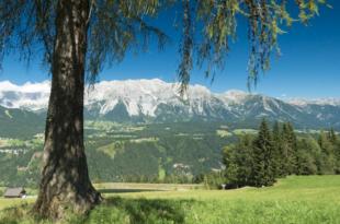 Dachstein 310x205 - Landflucht in Österreich mit dramatischen Ausmassen