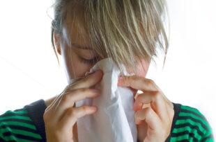 Grippe 310x205 - Grippewelle im Zweijahresrhythmus