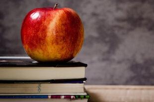 Bildung 310x205 - Gelsenkirchen: deutlich mehr Ausbildungsplätze