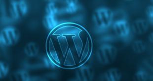 WordPress https 310x165 - WordPress und https: Ist der Umstieg sinnvoll?