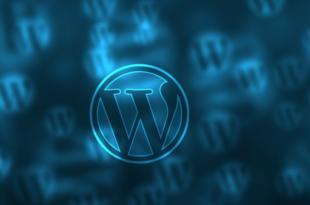 WordPress https 310x205 - WordPress und https: Ist der Umstieg sinnvoll?