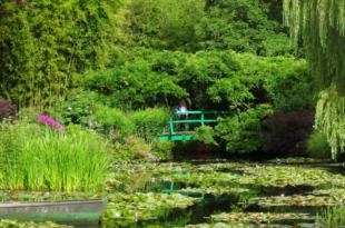 Monet Garten 310x205 - Städtereise: Claude Monet lockt nach Basel