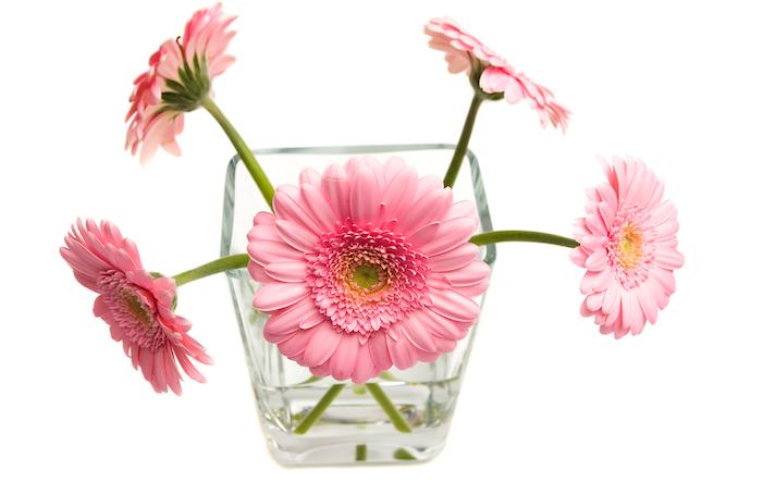"""Bild von Romantische Geschenke – nicht nur zum Valentinstag ein """"Muss"""""""
