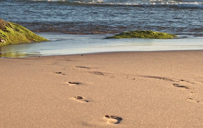 oekologischer Fussabdruck - Ökologischer Fußabdruck: Den Lebensstil messbar machen