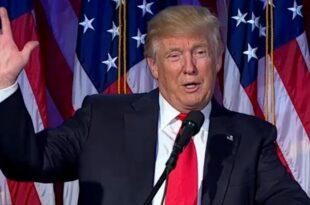 innogy chef terium trump kann uns nuetzen 310x205 - Innogy-Chef Terium: Trump kann uns nützen