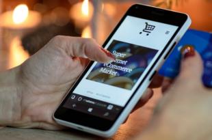 Internet Shop 310x205 - Internet Shop: Magento und WooCommerce im Vergleich