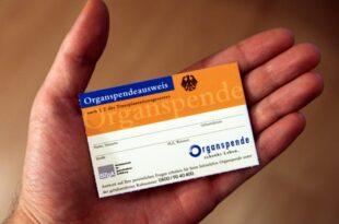 organspenden deutschland faellt im internationalen vergleich zurueck 310x205 - Organspenden: Deutschland fällt im internationalen Vergleich zurück