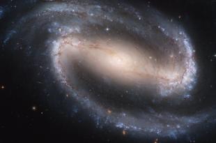 """Galaxie 310x205 - """"March for Science"""" in Neuseeland und Australien gestartet"""