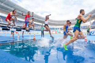 Leichtathleten 310x205 - Grünlippmuschel - regeneriert strapazierte Gelenke von Sportlern