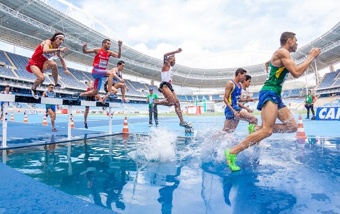 Bild von Grünlippmuschel – regeneriert strapazierte Gelenke von Sportlern