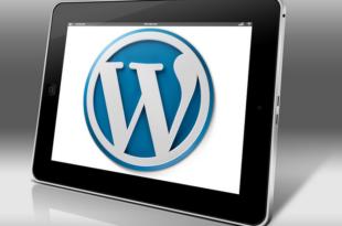 WordPress 310x205 - WordPress Updates - so bleibt dein Blog auf dem neusten Stand