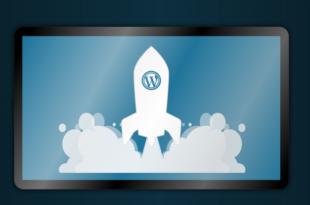 WordPress Server 310x205 - Lohnt sich als Blogger ein eigener Server?