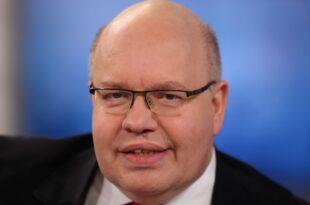 altmaier weist kritik an doppelrolle zurueck 310x205 - Altmaier weist Kritik an Doppelrolle zurück