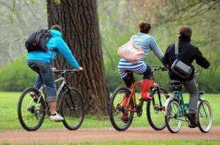 institut immer mehr kinder und jugendliche fahren mit helm fahrrad 310x205 - Chinesisches Start-up Ofo will in Deutschland durchstarten