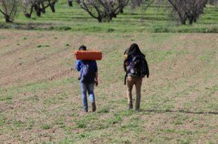 weniger fluechtlinge kehren freiwillig in heimat zurueck 310x205 - Weniger Flüchtlinge kehren freiwillig in Heimat zurück